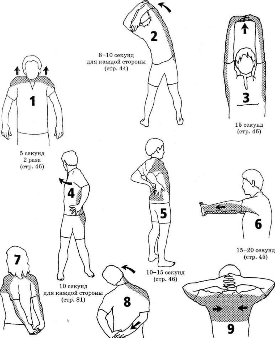 Разминка перед тренировкой для девушек. разогревание и растягивание мышц для женщин в тренажерном зале и для дома. упражнения для здоровья