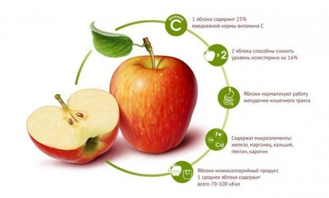 » калорийность яблока