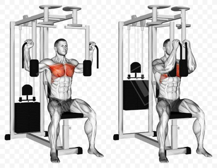 Сведение рук в тренажере — лучший способ изолированно проработать мышцы груди