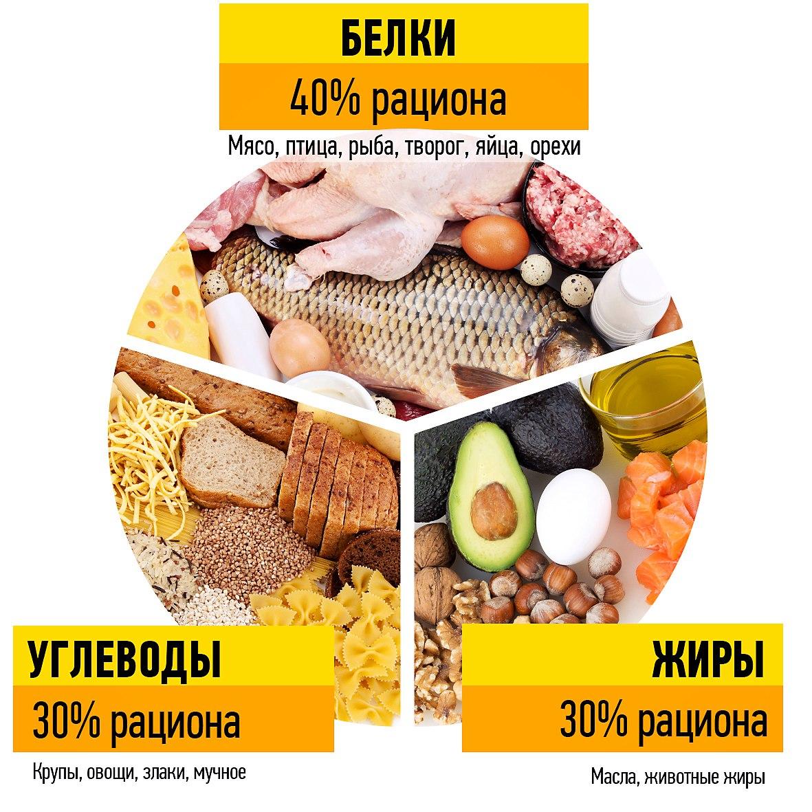Диета для сушки тела от натурального бодибилдера layne norton | promusculus.ru