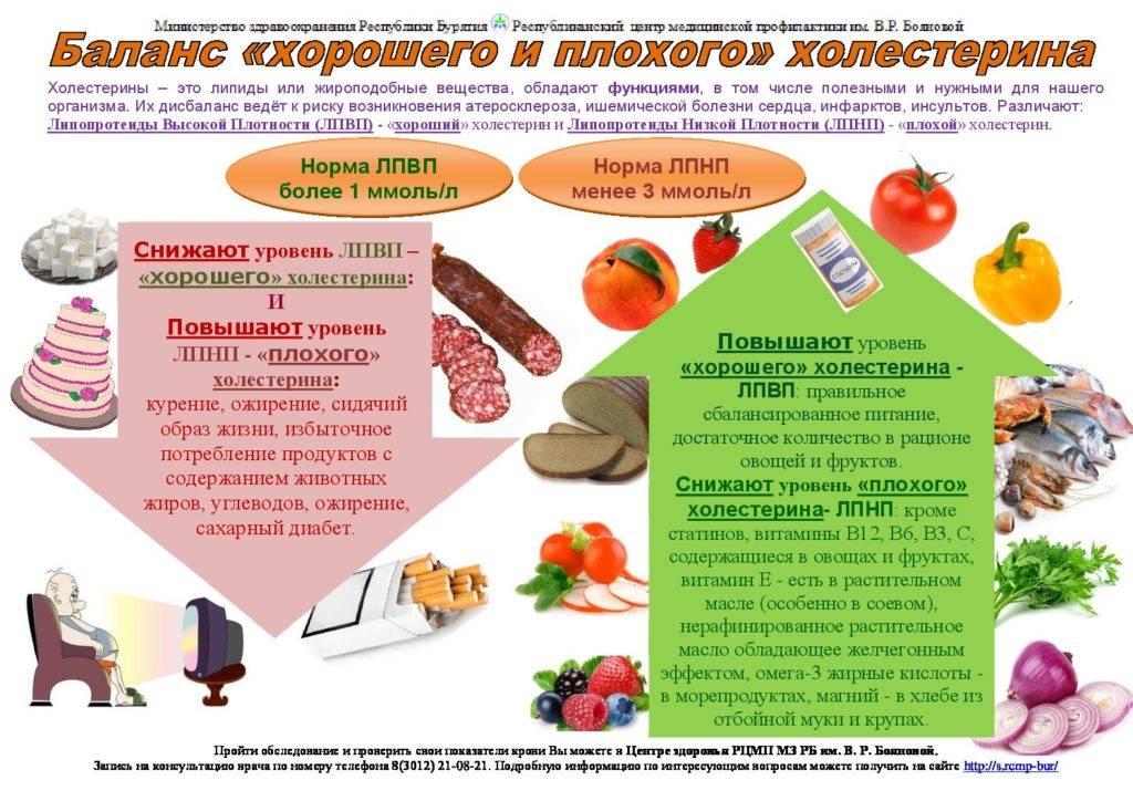 Холестерин 7,0-7,9 ммоль/л: это норма или много, что делать, чтобы снизить показатель до нормальных значений и предотвратить развитие атеросклероза у мужчин и женщин пожилого возраста
