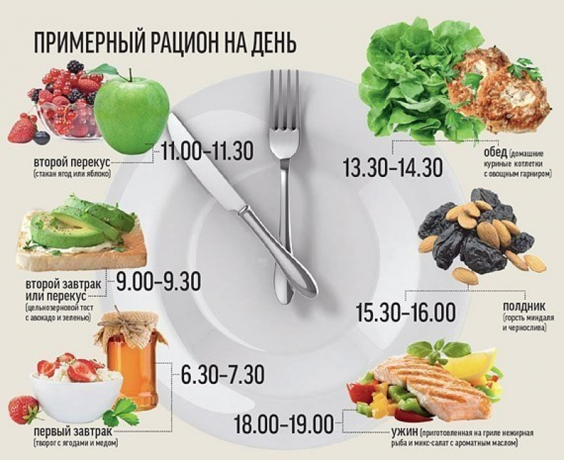 Питание 5-6 раз в день