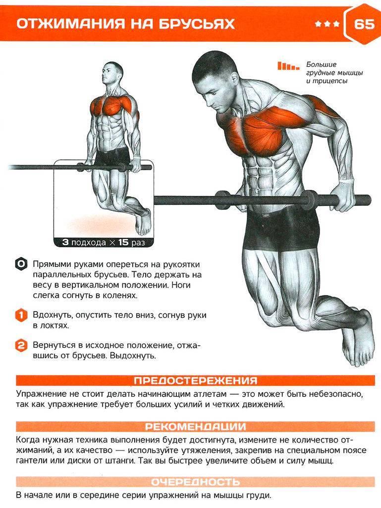 Сколько делать подходов и повторений для роста мышц