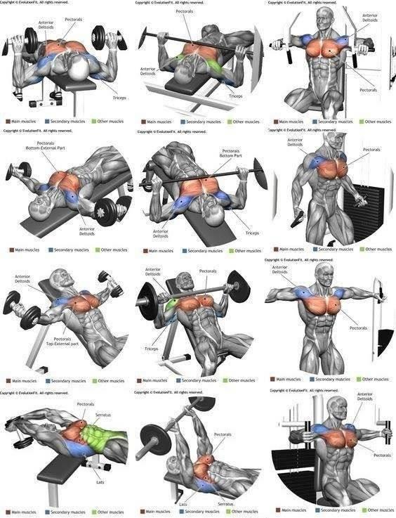 Тренировки в тренажерном зале для мужчин
