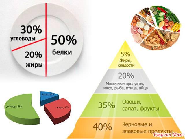 Почему нет смысла считать калории