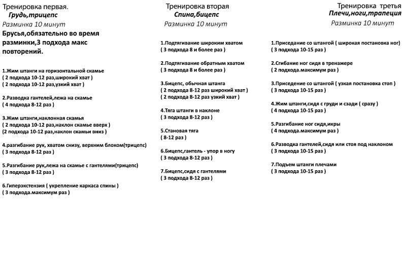Программа тренировок для эндоморфа на похудение, рельеф и набор мышечной массы