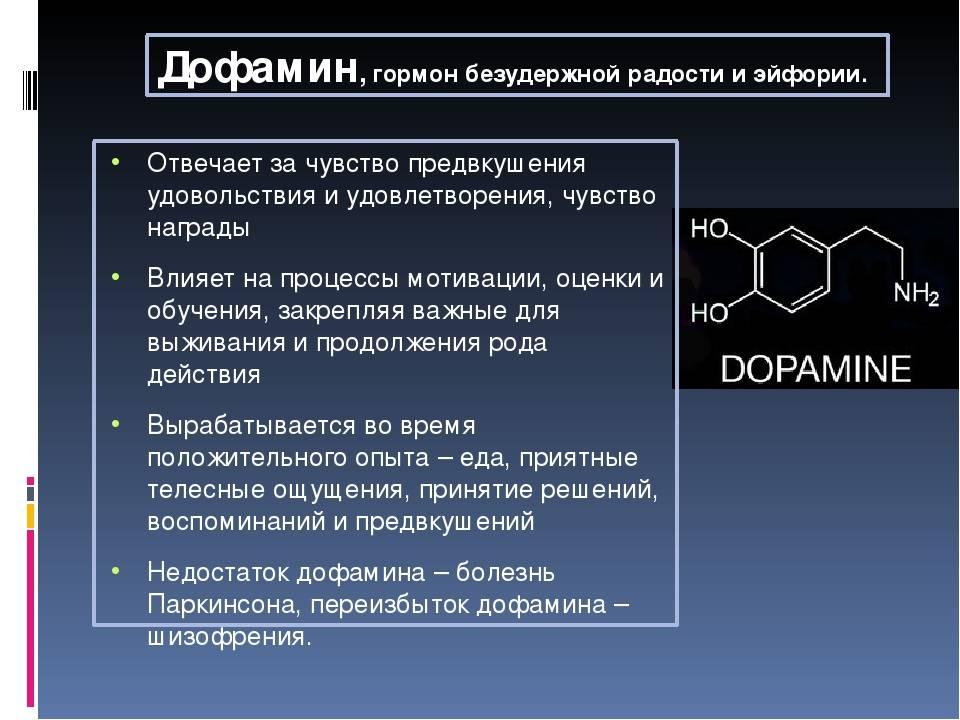 Дофамин - что это такое, гормон счастья. как повысить уровень дофамина