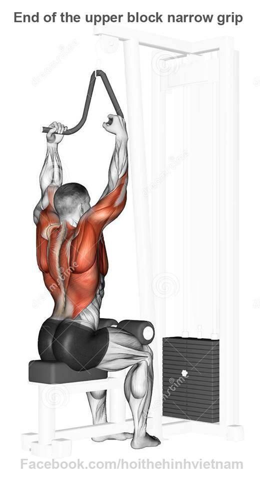 Как накачать крылья в домашних условиях и в тренажерном зале: упражнения