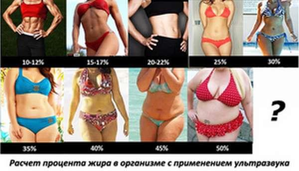 Расчет нормы потребления белков, жиров, углеводов для женщин, мужчин, детей, похудения и набора веса