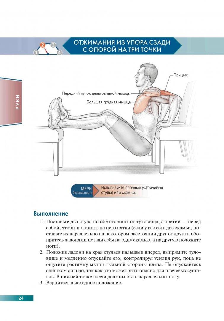 Тренировки на все тело с собственным весом в домашних условиях