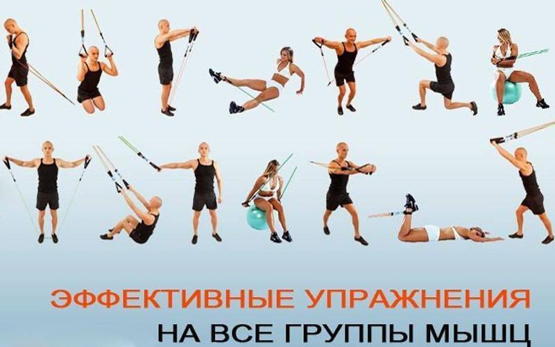 Виды эспандеров для занятий фитнесом и домашних упражнений