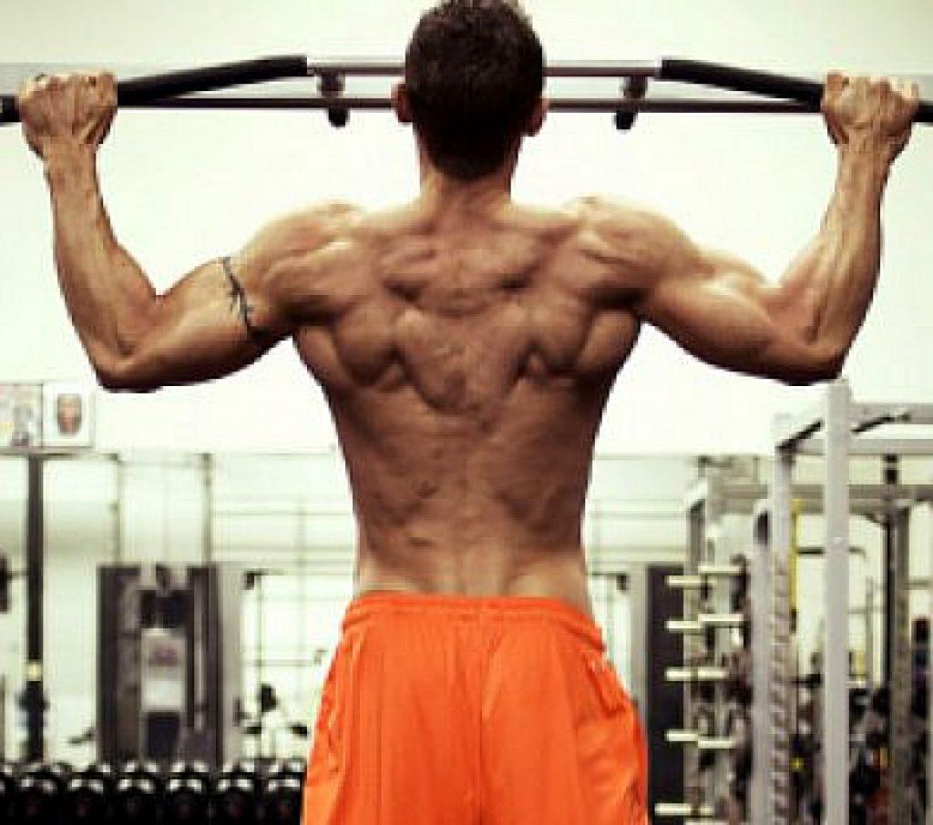 Лучшие упражнения для широчайших мышц спины, трапеции и поясницы