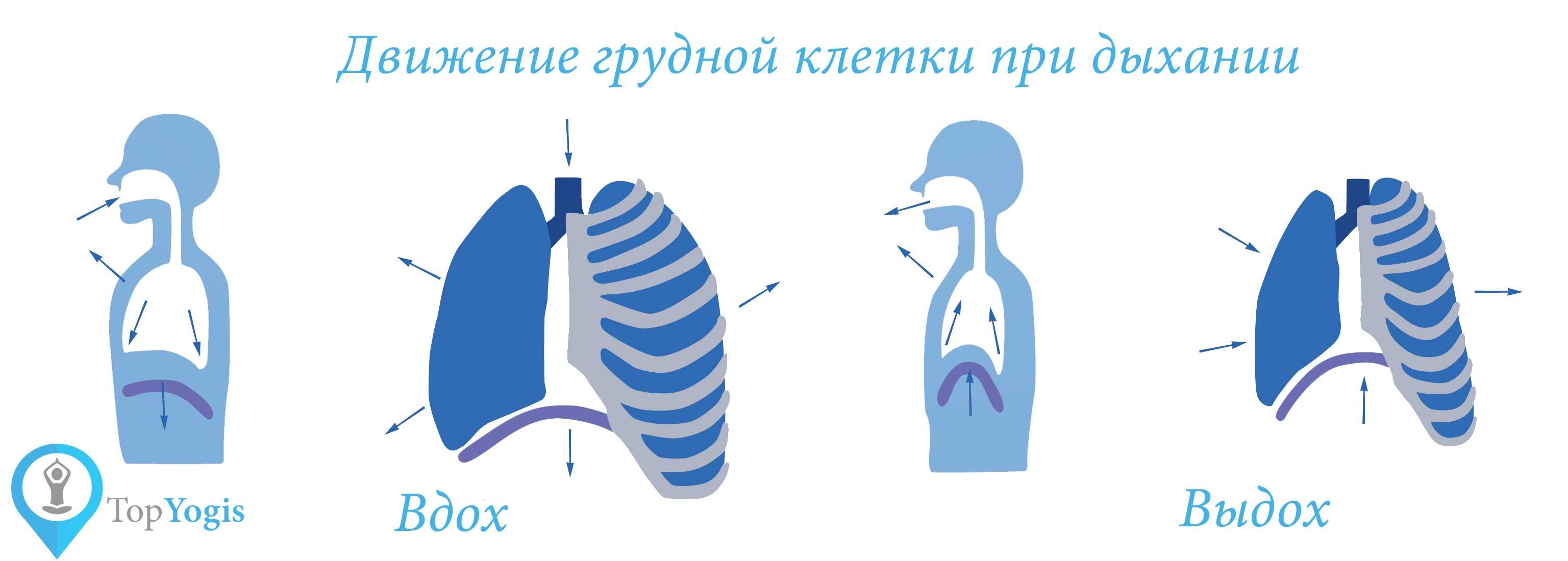 Как дышать и стоит ли менять привычное дыхание?