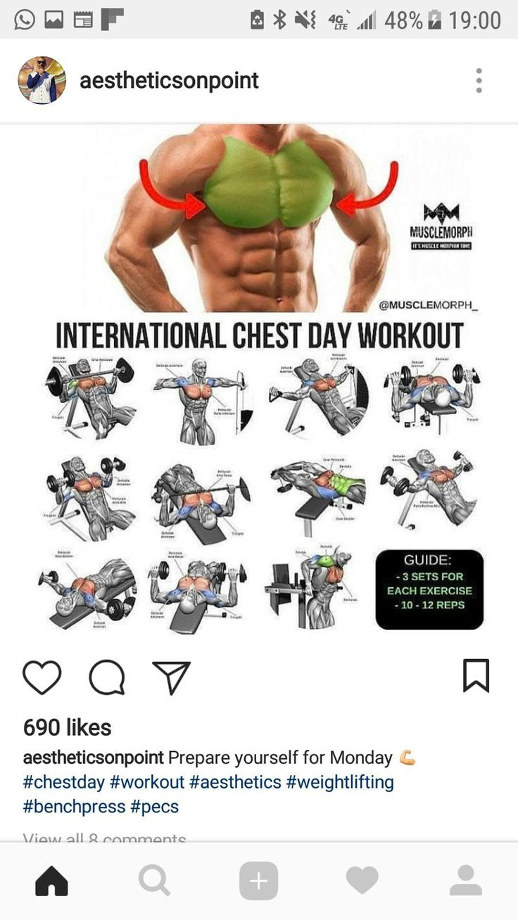 Программа тренировки грудных мышц