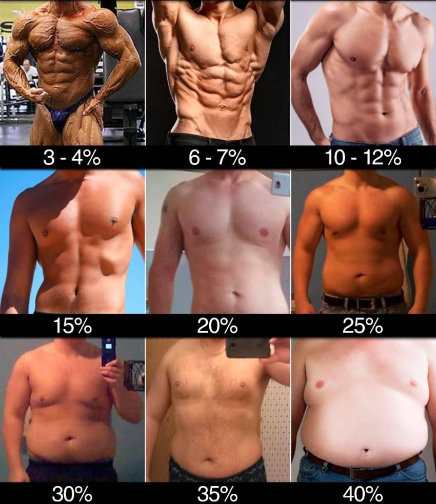 Как узнать процент жира в организме, определить норму для женщин