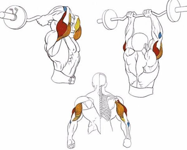 Тяга гири сумо к подбородку: польза упражнения и техника выполнения