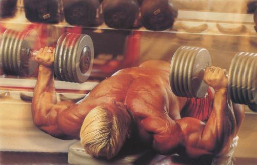 Топ 10 советов для набора мышечной массы и силы