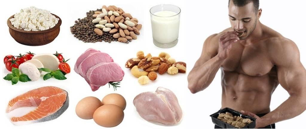 Все о белке на похудении: продукты богатые белком, нормы, как рассчитать, в какое время есть