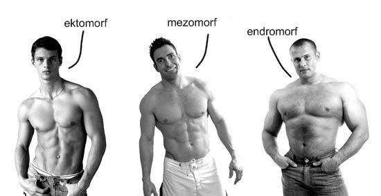 Питание для эктоморфа для набора массы: примерная программа рациона