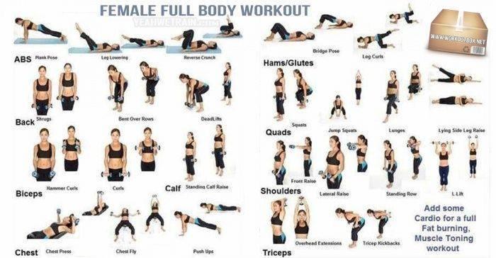 3 жиросжигающих тренировки фулбоди