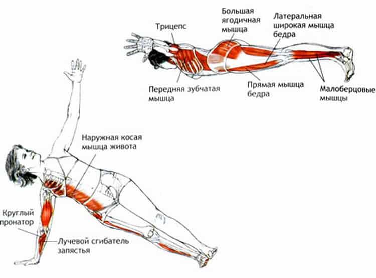 Упражнение планка — польза и вред, как правильно делать