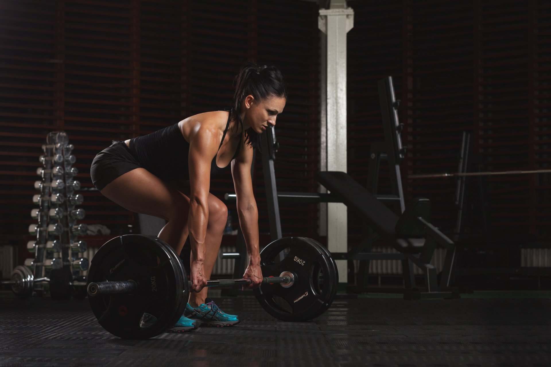 Базовые упражнения для девушек: топ самых лучших программ для тренировок в домашних условиях и тренажерном зале!