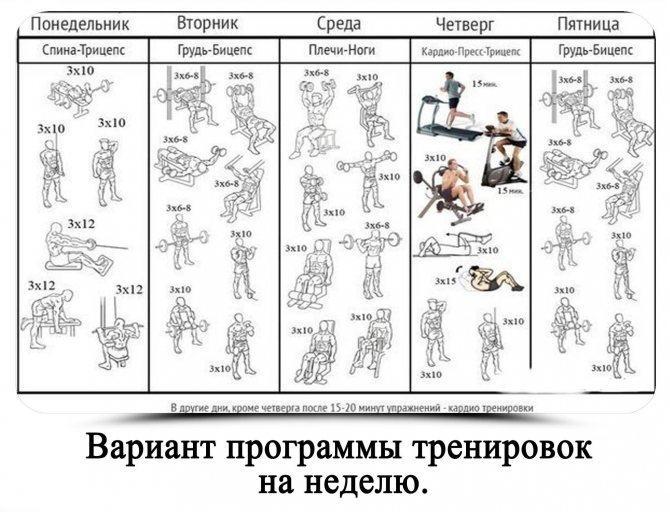 Тренировка на силу