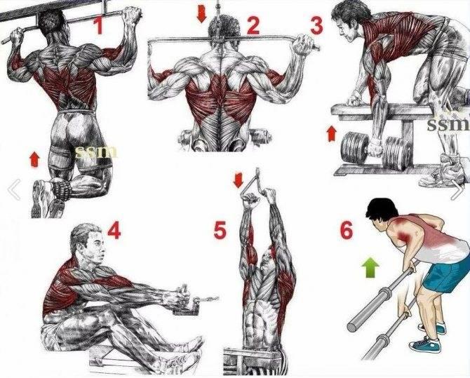 Упражнения для спины в домашних условиях - комплекс, инструкция и советы!
