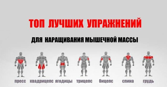 Базовые упражнения для набора мышечной массы | бомба тело
