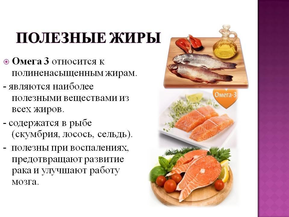 Полезные жиры для организма при правильном питании