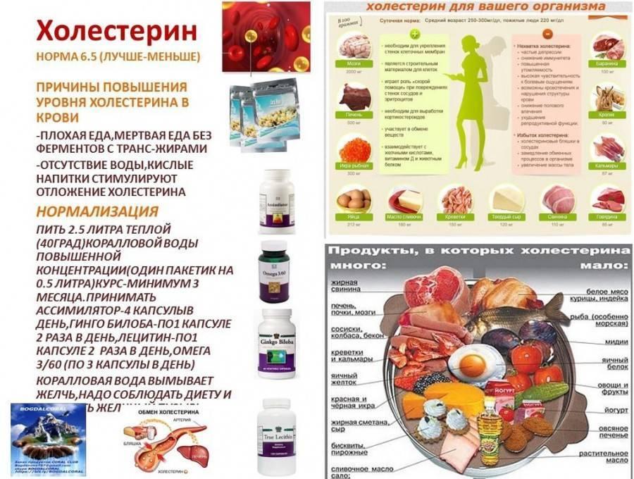Повышен холестерин в крови: что это значит, как лечить, диета, народные средства
