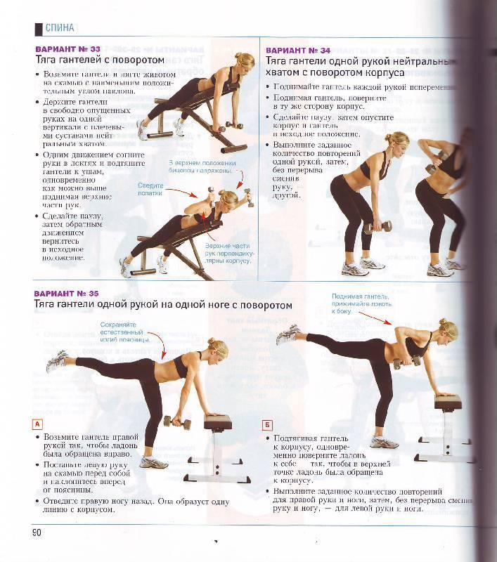 Упражнения и тренировки рук для девушек в зале