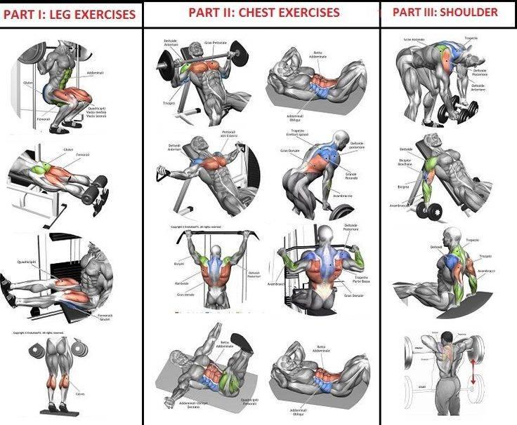 Как быстро похудеть в спортзале мужчине: программы тренировок в тренажерном зале