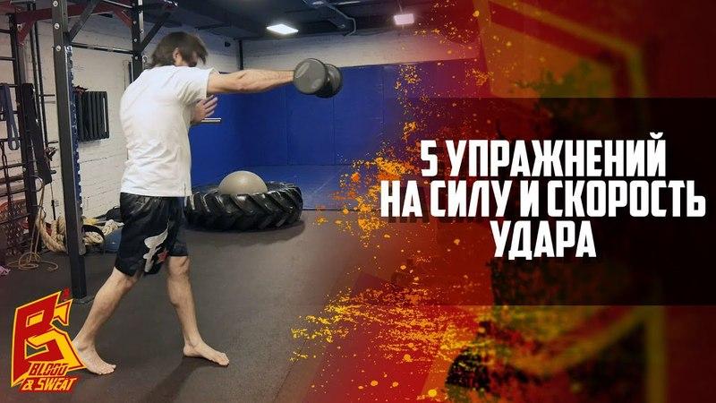 Как увеличить силу удара кулаком, упражнения на силу удара