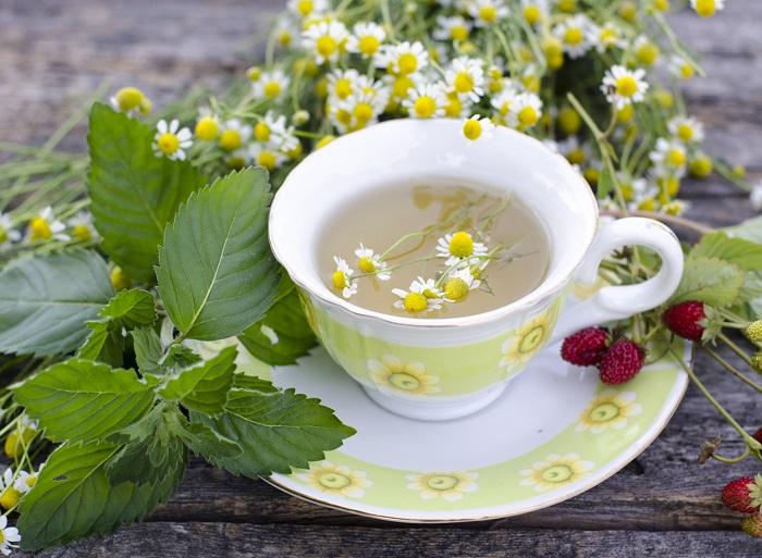 Ромашковый чай польза и вред для мужчин, женщин и детей