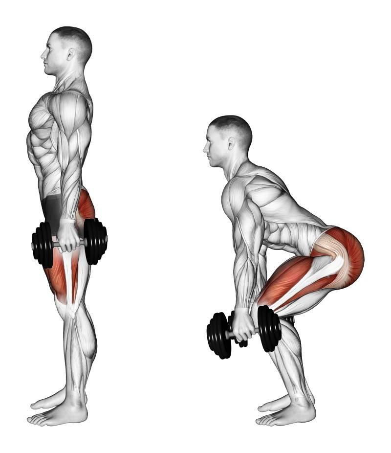 Берпи: сколько калорий сжигает, описание упражнения, пошаговая инструкция выполнения и проработка мышц всего тела - tony.ru