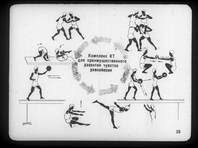7 принципов построения тренировочного процесса