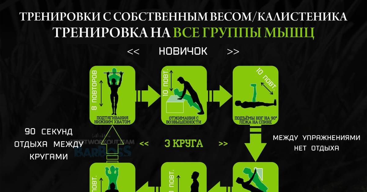 Калистеника: программа тренировок для начинающих и упражнения