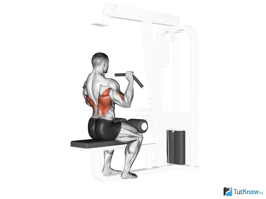 Развиваем широчайшую мышцу спины с тягой т-образного грифа