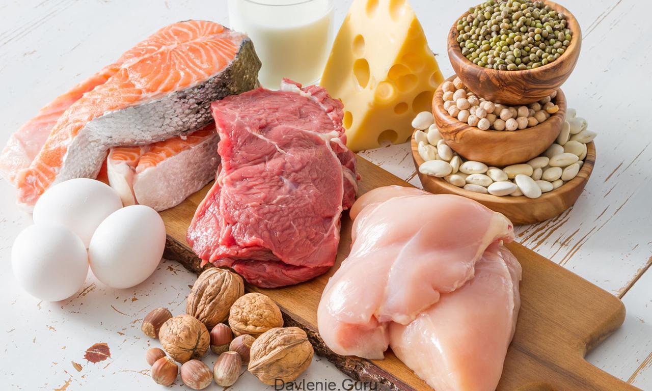 Что ест белка в естественных условиях и чем кормить ее в неволе