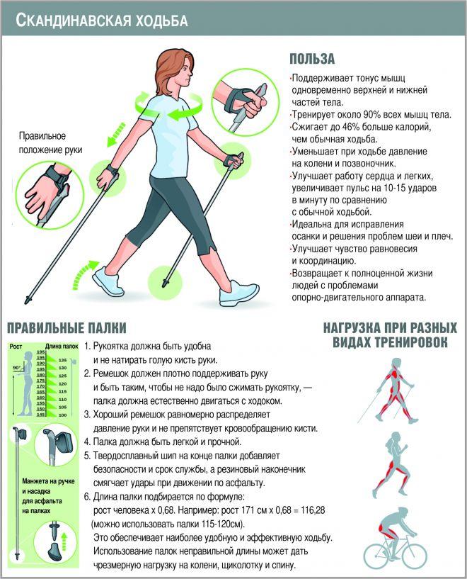 Скандинавская ходьба для похудения: польза и правильная техника - allslim.ru
