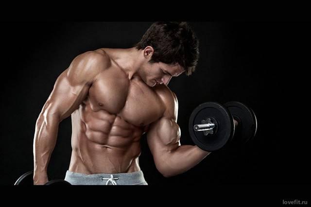 Бег и набор мышечной массы, мешает ли бег росту мышц?