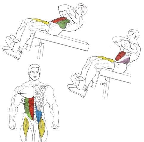 Скручивание на наклонной скамье (римский стул) | | strong life