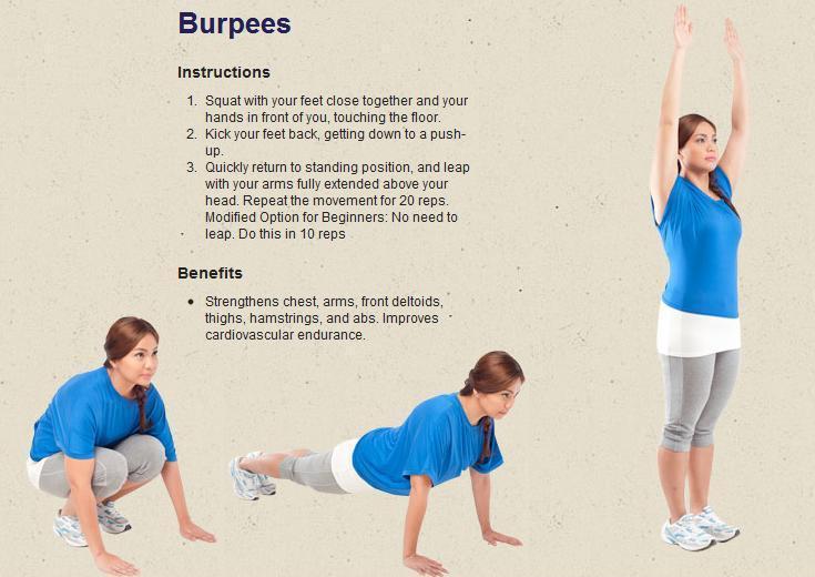 Берпи: сколько калорий сжигает, описание упражнения, пошаговая инструкция выполнения и проработка мышц всего тела