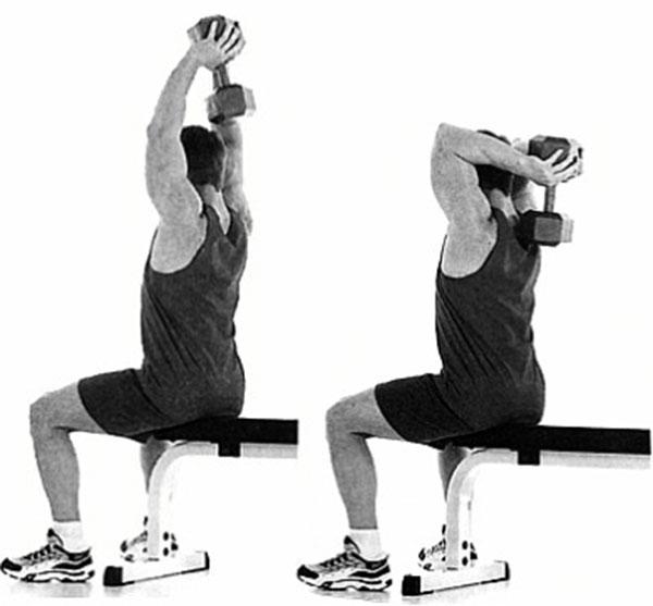 Разгибание руки с гантелью из-за головы: фото и видео упражнения