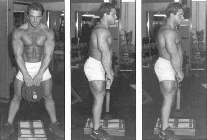 Стюарт макроберт: биография, программа тренировок, рост, вес