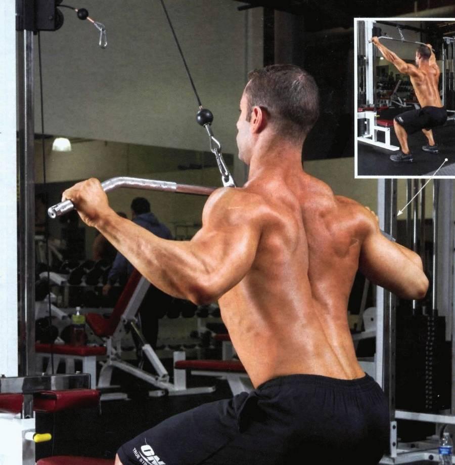 Лучшие упражнения на мышцы спины в тренажерном зале