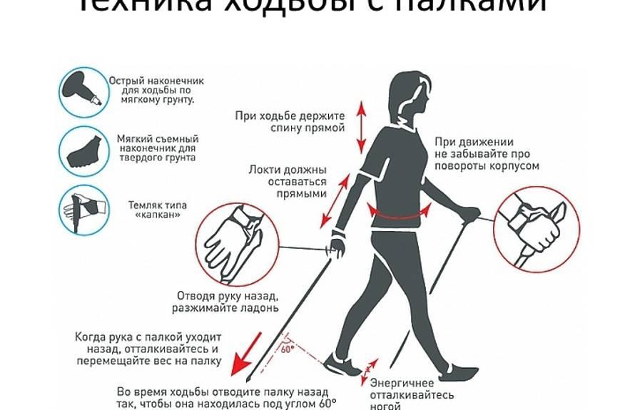 Скандинавская ходьба с палками для похудения: техника и как правильно ходить?womfit