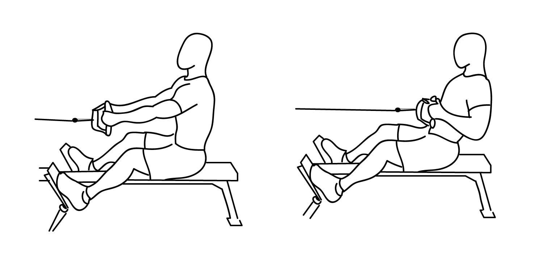 Тяга на горизонтальном блоке к поясу для тренировки спины