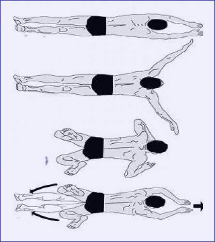 Плавание брассом – описание техники, упражнения, советы